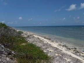 NORTH SIDE OF LITTLE CAYMAN - Image 3